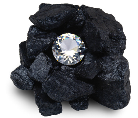 diamondintheroughbusiness